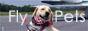 Flypets - перевозка животных самолетом
